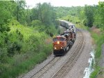 The BNSF Feed Train comes around the bend
