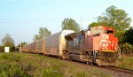 CN X38531 11