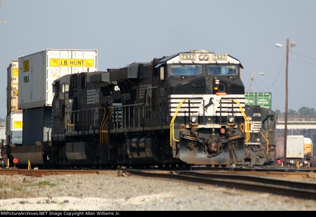 NS 7537 (NS GJ04 W/NS 229)