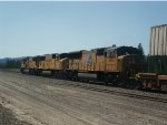 SD70Ms on the ZG2LT