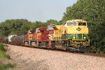 NS 1067 and NS 8104