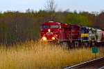 Canadian Pacific invades CSX Selkirk Branch