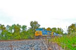 Out of the weeds come CSX Q351