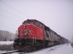 CN 5446