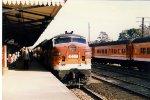 Arriving at Wollongong