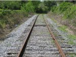Georgia Northeastern Railroad tracks at Cherrylog