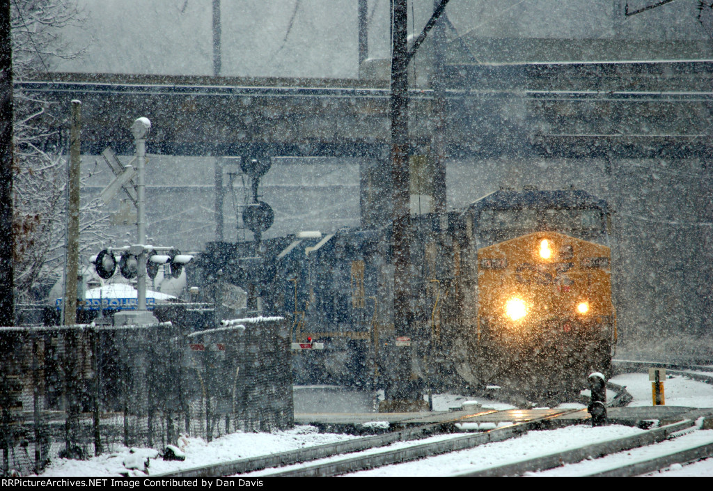 Beasty Q418-11 in the Snow