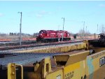 CP 8250 and STLH 8245
