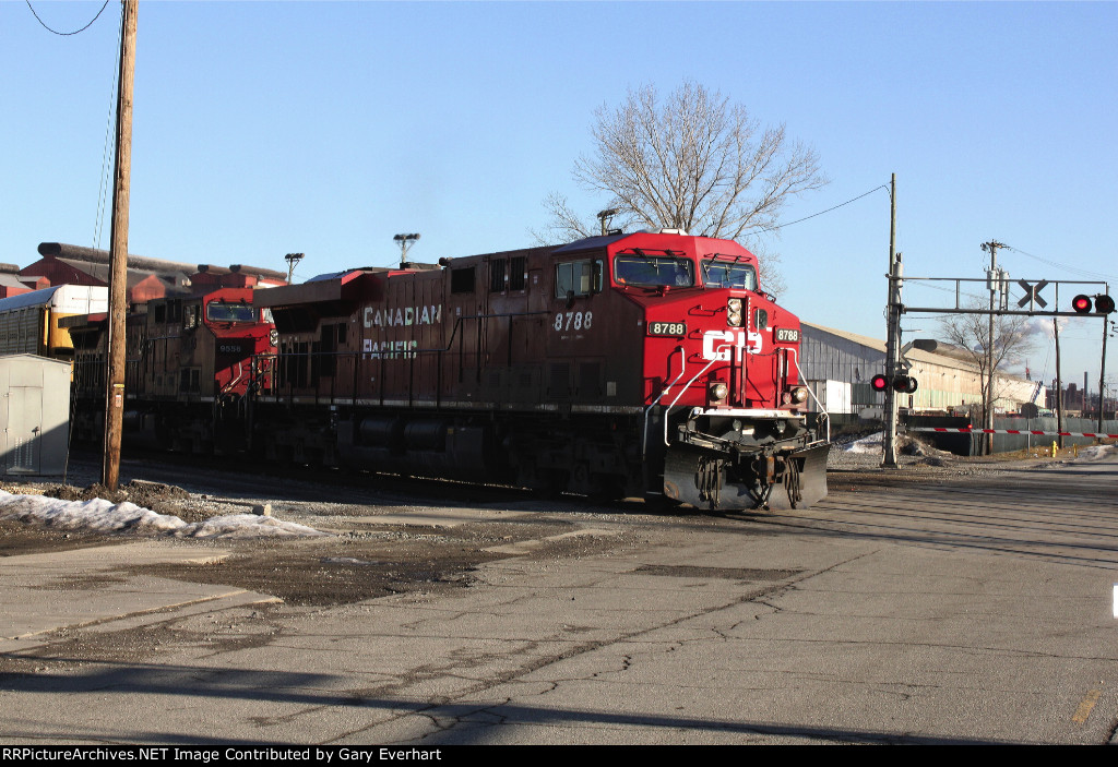 CP 8788 and CP 9556