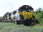 Meridian and Bigbee mixed freight train