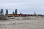 BNSF 4917 Leading Westbound Grainer