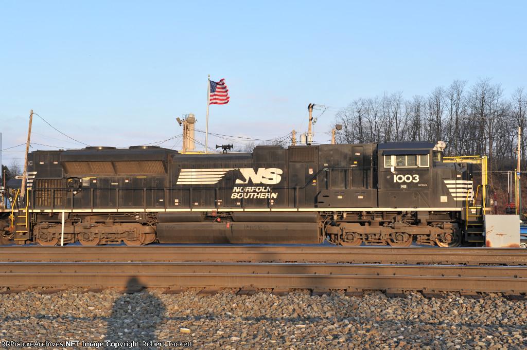 NS 1003
