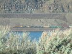 BNSF train sneaks by on the other side of the river