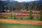 Washington & Idaho Railway