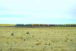 BN 9274 W/B Grain Train