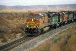 BNSF 4738 West