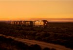 BNSF 766 West Sunrise