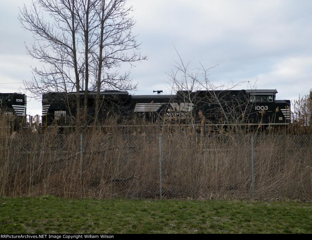 NS Bison yard