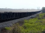 Coal Cars and coal dust at Bort Rd.