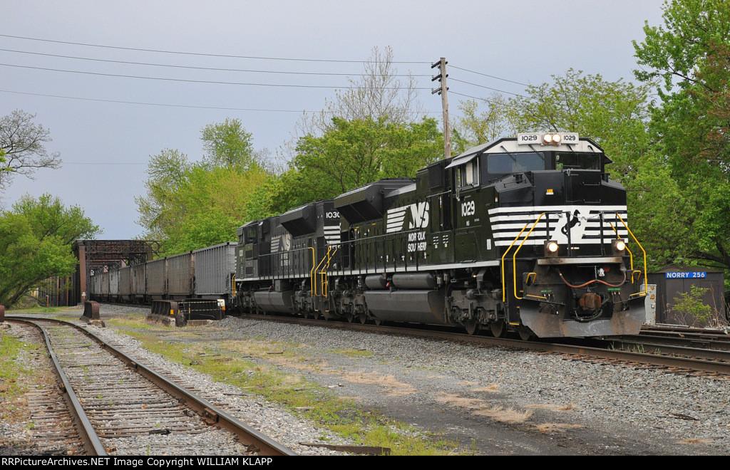 NS 633 NS 1029 NS 1030