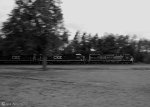 CSXT 163 zooms past the Roadmaster's Lodge (Black & White)