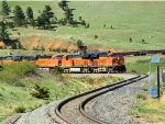 BNSF 6264 Short Manifest Approaching the Hot Box Detector 22.6