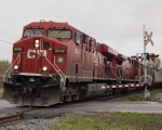 CP 8818 and CP 9217