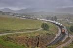 Rainy Bealville