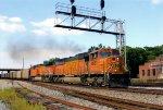 BNSF 8951 on NS 736