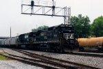 NS 8725 on NS 56N