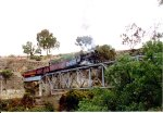 Mixed train crossing this bridge