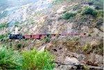 Train running thru a scenic area