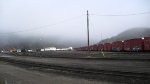 A foggy afternoon at the Schreiber yard. 50+ paper service boxcars sitting in yard.