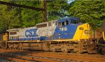 CSX CW40-8 7818 with black number boards on Q438-30