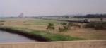 Across the Meadows