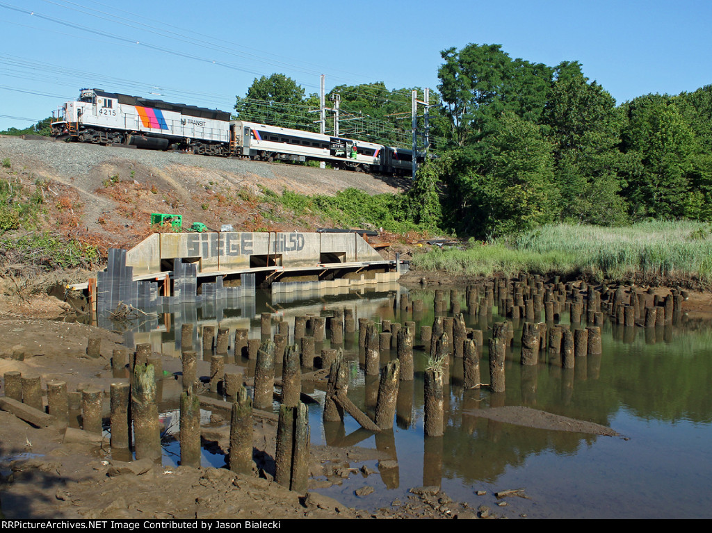 Pilings of the Original Matawan Creek Trestle
