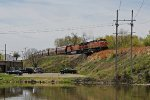 Long train of grain loads from Gavilon at Avalon rumbles through town with BNSF power