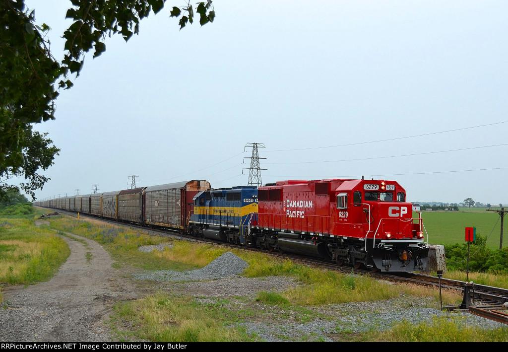 CP 6229
