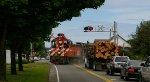 Crossing Railroad Ave