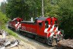 Simpson SW1200s
