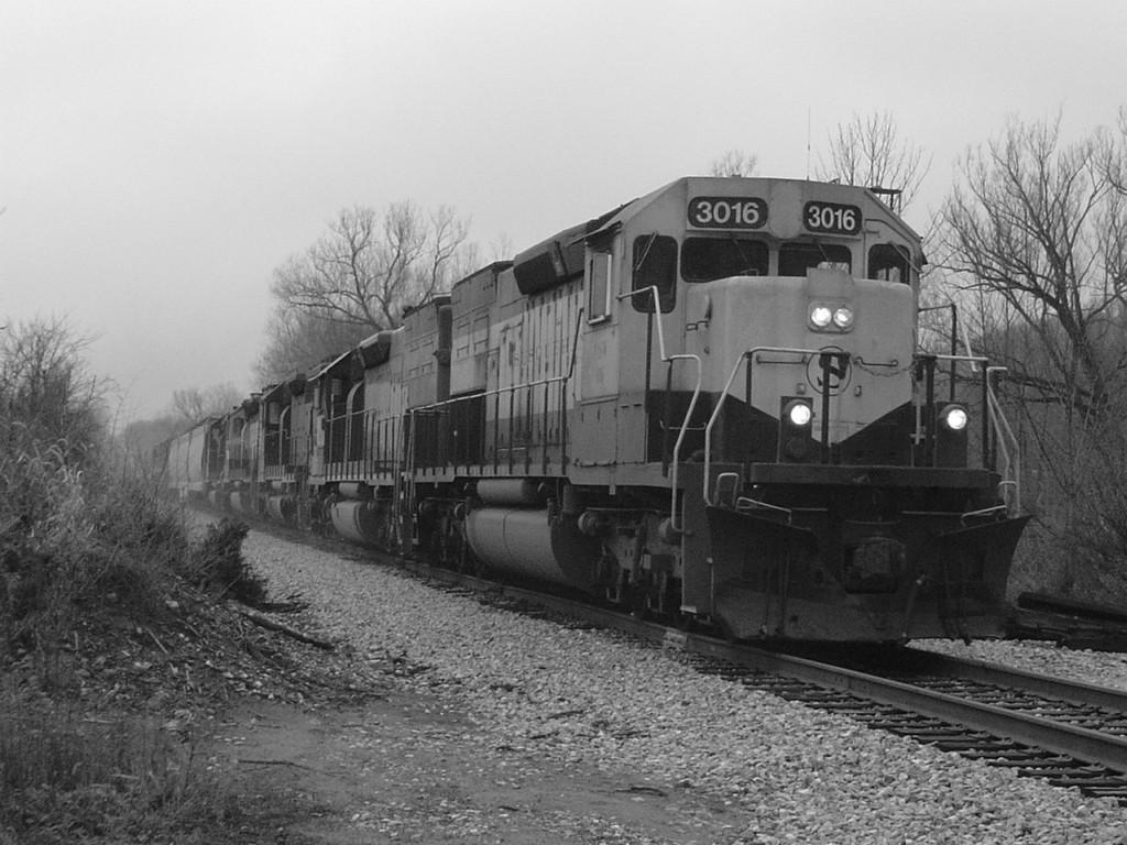 NYSW 3016