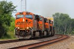 BNSF 7498 Rips on a EB stack train all Elephant style.