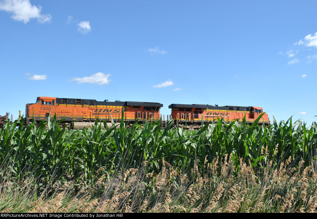 BNSF riding on corn?!?!