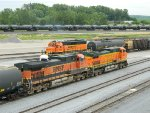 All The BNSF Paint Schemes In One Shot