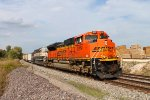 BNSF 9219 heads a sb coal load.
