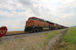 BNSF 6318 heads nb with a empty ucex coal.