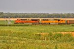 BNSF 9145 and BNSF 9911