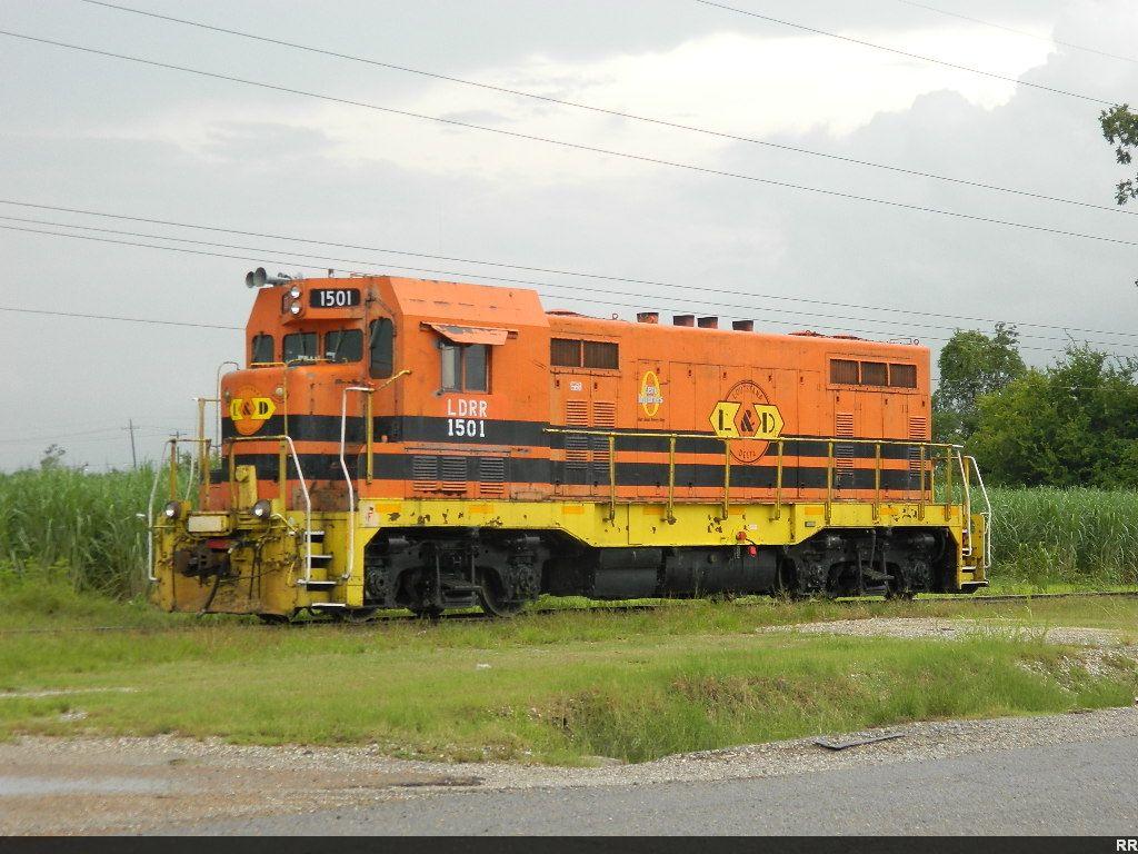 LDRR 1501(CF7)