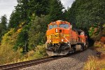 BNSF eastbound of Stevenson WA. Columbia River Gorge