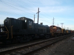 Lineup of ALCo variety